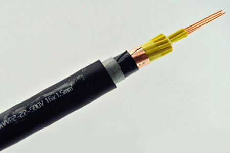 Plastic Insulated Control Cable